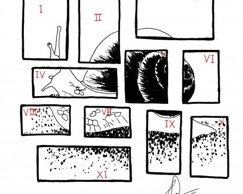 Ilustración que muestra una composición de fotografías o piezas formando un caracol