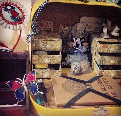 Fotografía de maletín de naturalista decimonónico con cuaderno de campo, frascos, lupa, pinzas, etc.