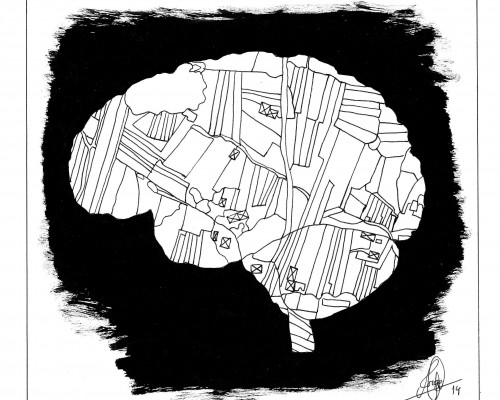 Ilustración en B/N que muestra un cerebro parcelado como los campos en foto aerea